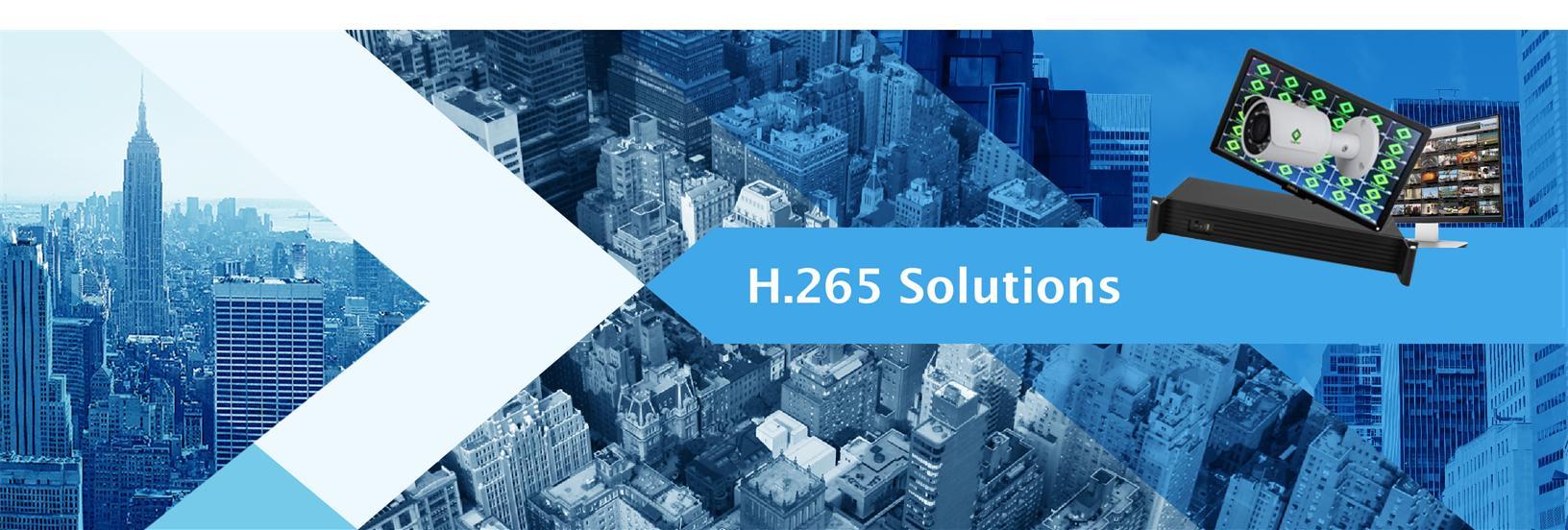 Launches VSENSE H.265 Solution